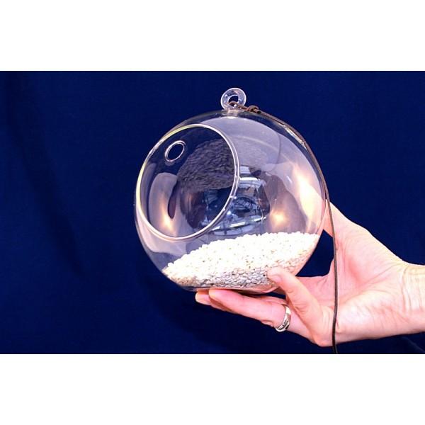 Vetro palla grande for Tartarughiera grande vetro